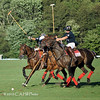 Polo : 6 galleries with 579 photos